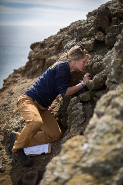 CIES staff, Amelia DuVall, conducts Scripps's murrelet monitoring at Arch Point North Cliffs plot on Santa Barbara Island.